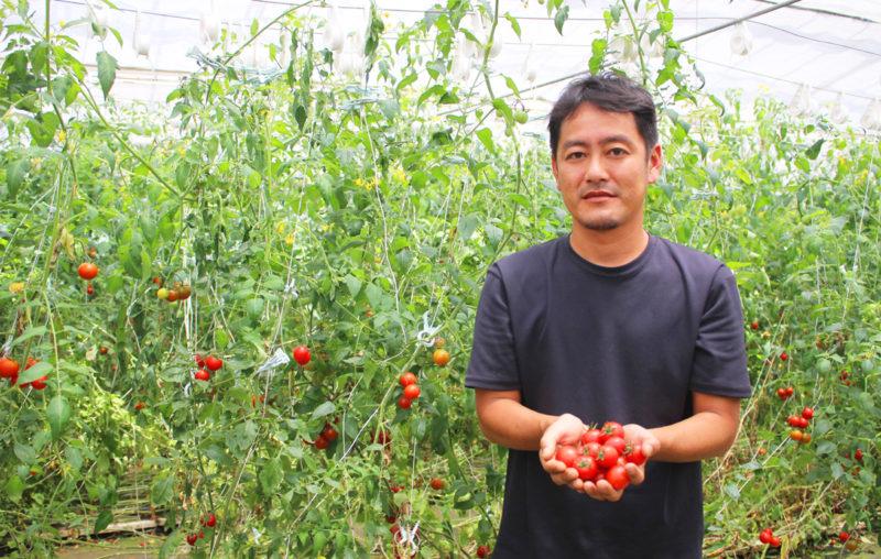 湘南佐藤農園