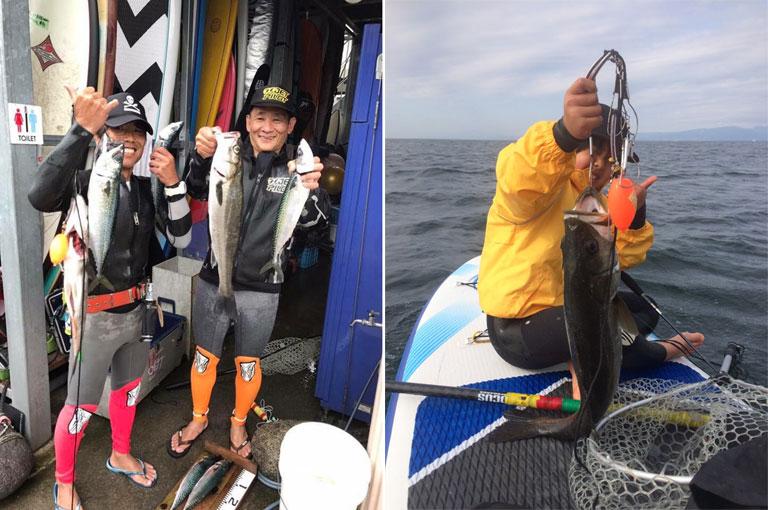 SUPフィッシング 釣れた魚