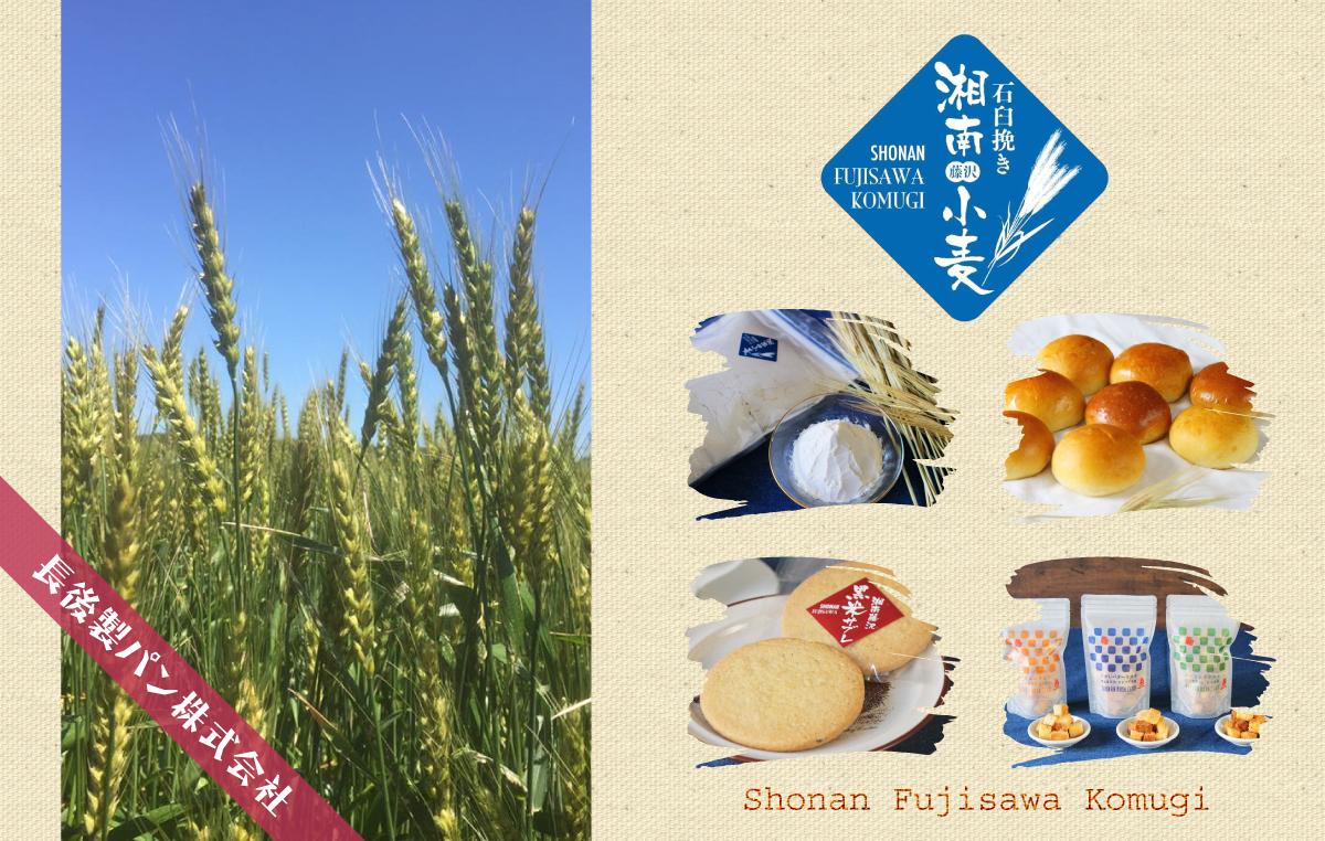 湘南藤沢小麦