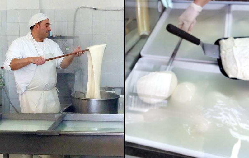 イタリアのブッラータチーズ作り